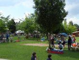 Green energy park fondazione la fenice